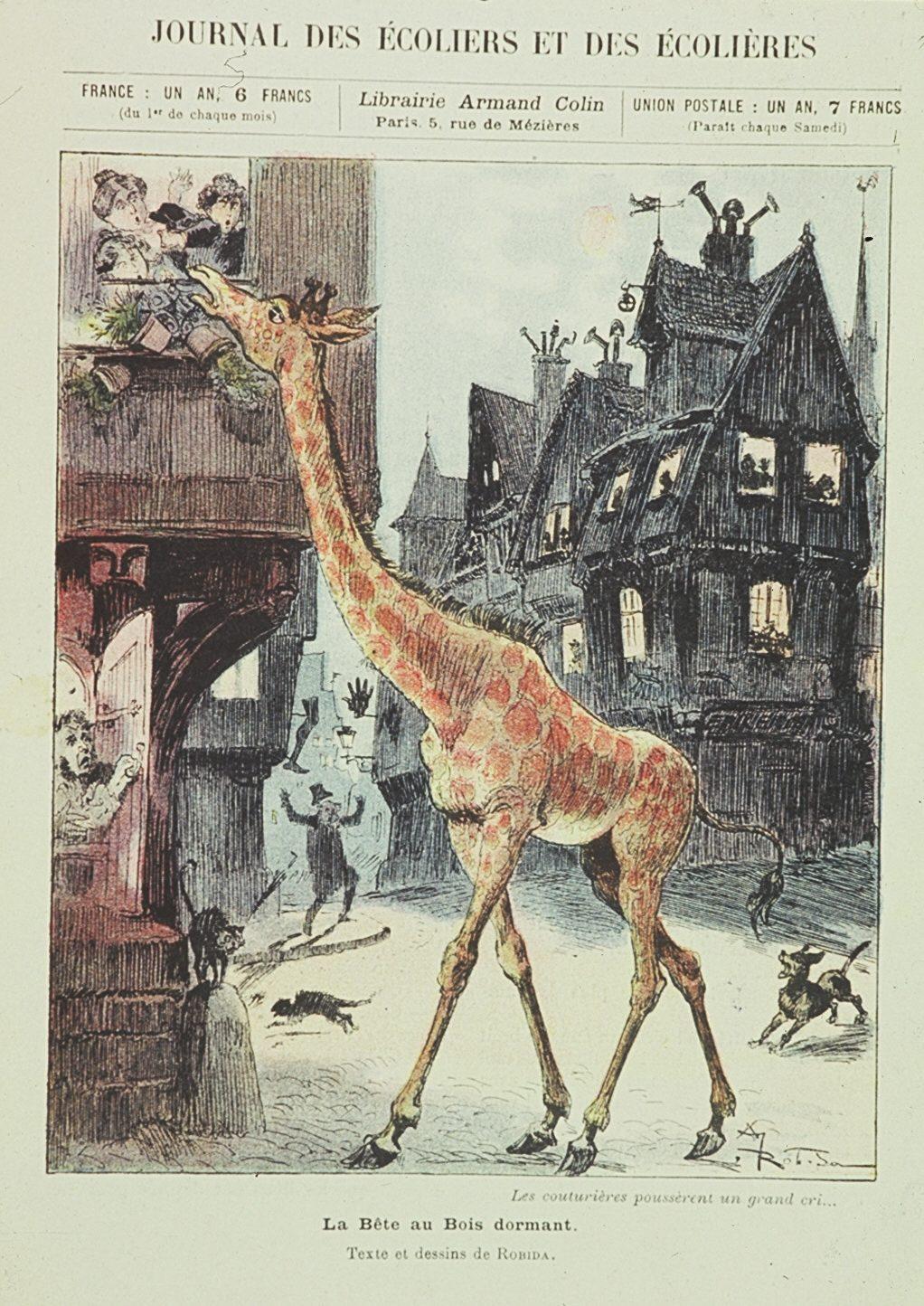 Giraf'Actu